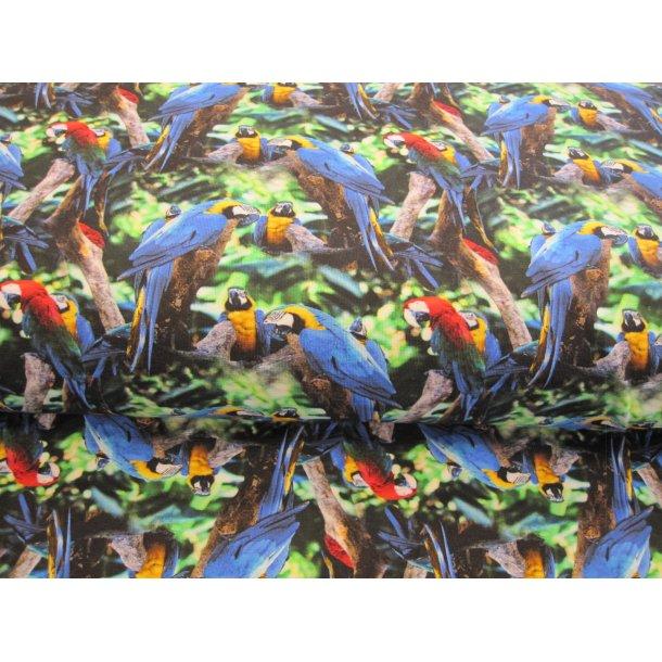 Jersey digital, blå og røde papegøjer i træerne