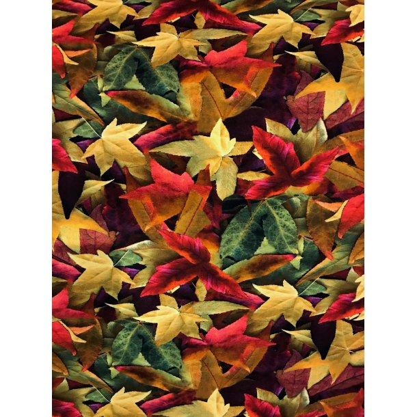 Jersey digital, De flotte efterårs blade