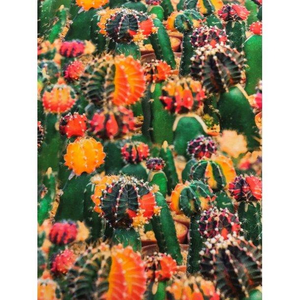 Jersey digital, grønne kaktus m. orange/gule/røde farver