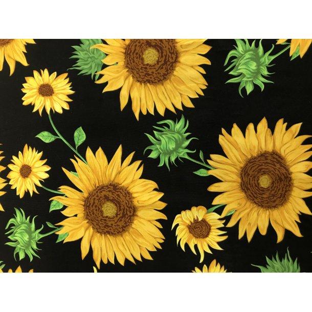 Jersey digital, flotte gule solsikker, mørk marine blå bund