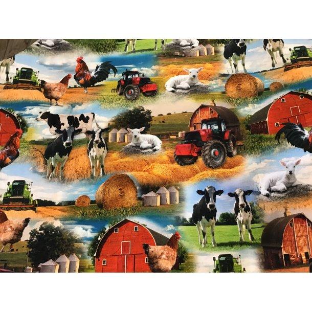 Jersey digital, bondegårdens dyr og den røde lade