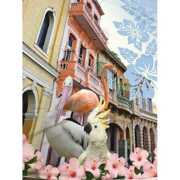 Jersey digital, flamingo/kakadue/pelikan/påfugl i gaden, PANEL