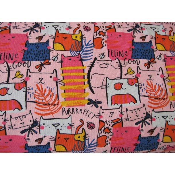 French Terry, Hyggelige buttede katte, hvid/blå/pink, lyserød bund
