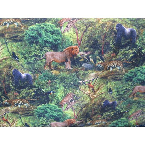 French Terry, Junglens løve, gepard, gorilla og meget mere